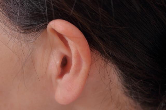 耳を鍛える